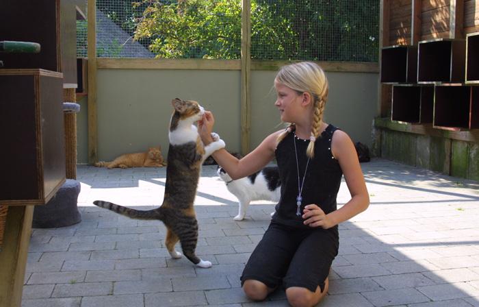 Katte-og-børn_red